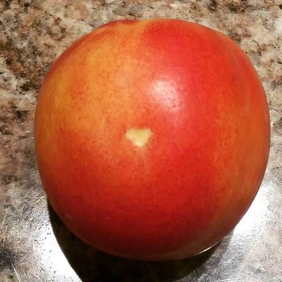 nectarine heart